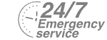 24/7 Emergency Service Pest Control in Purley, Kenley, CR8. Call Now! 020 8166 9746
